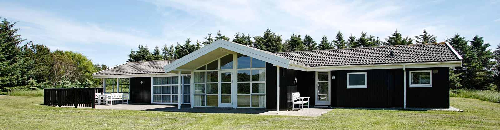 d nemark ferienhaus mit pool dancenter. Black Bedroom Furniture Sets. Home Design Ideas